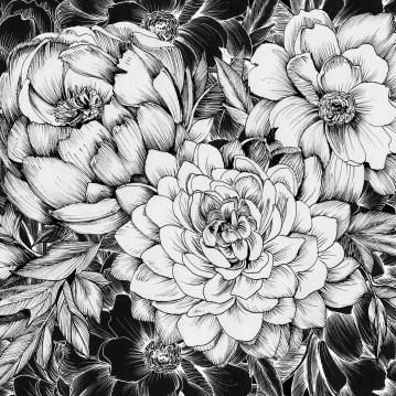 Dahlias & Peonies Black 2017