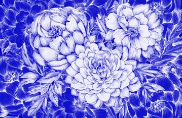 Dahlias & Peonies Blue 2017